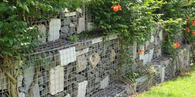 Gard gabioane cu plante decorative